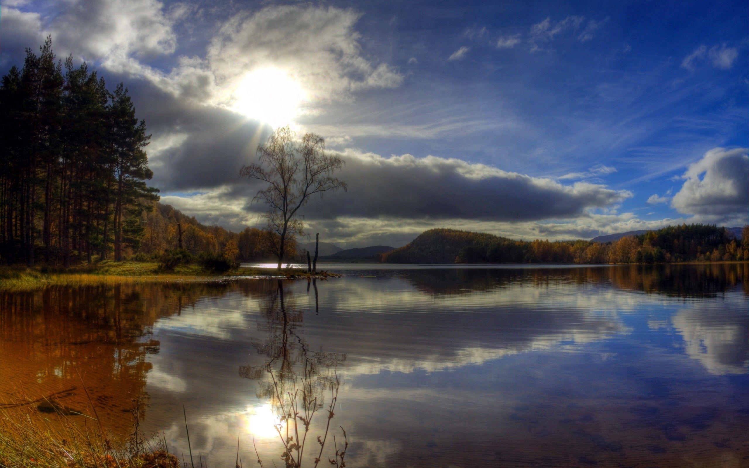129519壁紙のダウンロード自然, 川, イブニング, 夕方, 木-スクリーンセーバーと写真を無料で