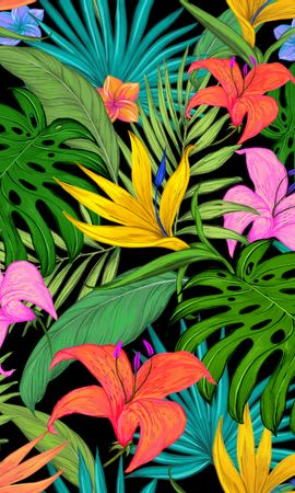 67335 скачать обои Текстуры, Узор, Тропический, Листья, Лилии, Цветной, Цветы, Пальмы - заставки и картинки бесплатно