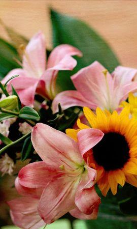 87752 скачать обои Цветы, Лилии, Подсолнух, Букет, Ведро, Хризантемы - заставки и картинки бесплатно