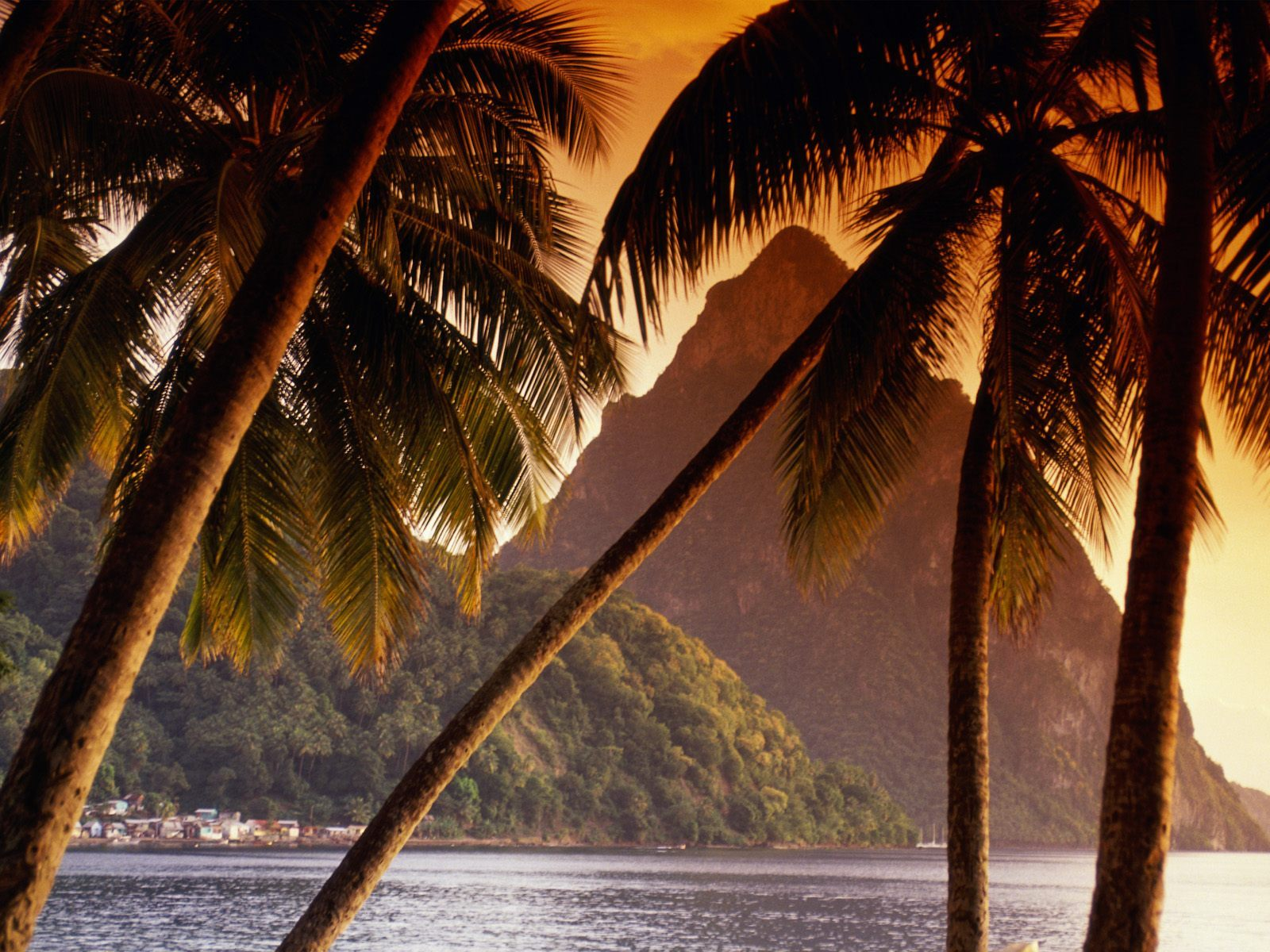 20980 download wallpaper Landscape, Mountains, Sea, Palms screensavers and pictures for free