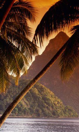 20980 скачать обои Пейзаж, Горы, Море, Пальмы - заставки и картинки бесплатно