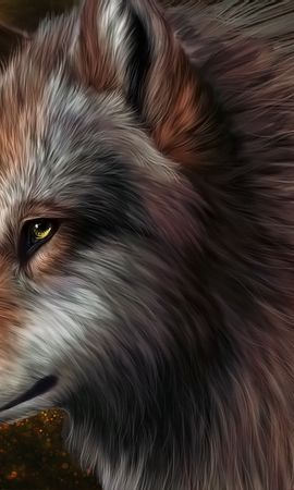 18645 download wallpaper Animals, Wolfs, Pictures screensavers and pictures for free
