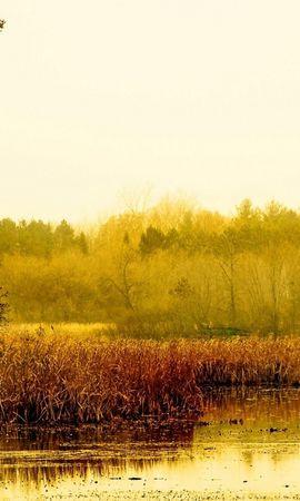 35655 скачать обои Пейзаж, Река, Осень - заставки и картинки бесплатно