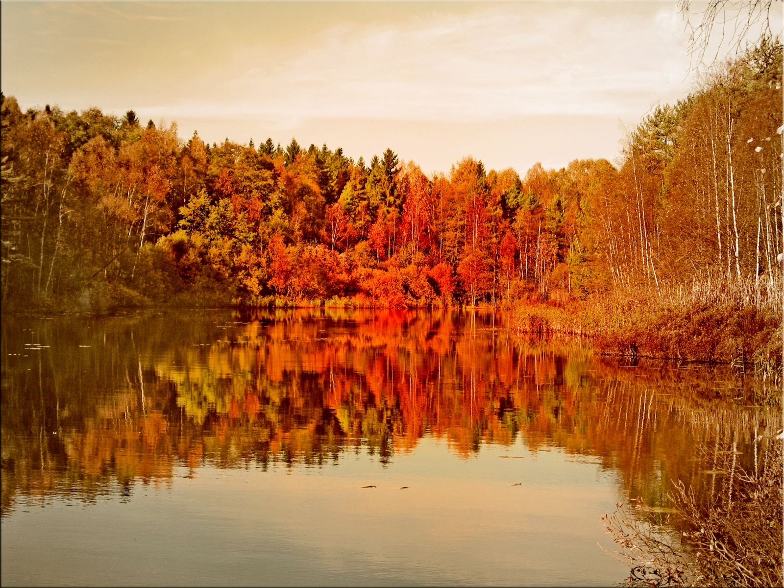 2459 скачать обои Пейзаж, Вода, Деревья, Осень, Озера - заставки и картинки бесплатно