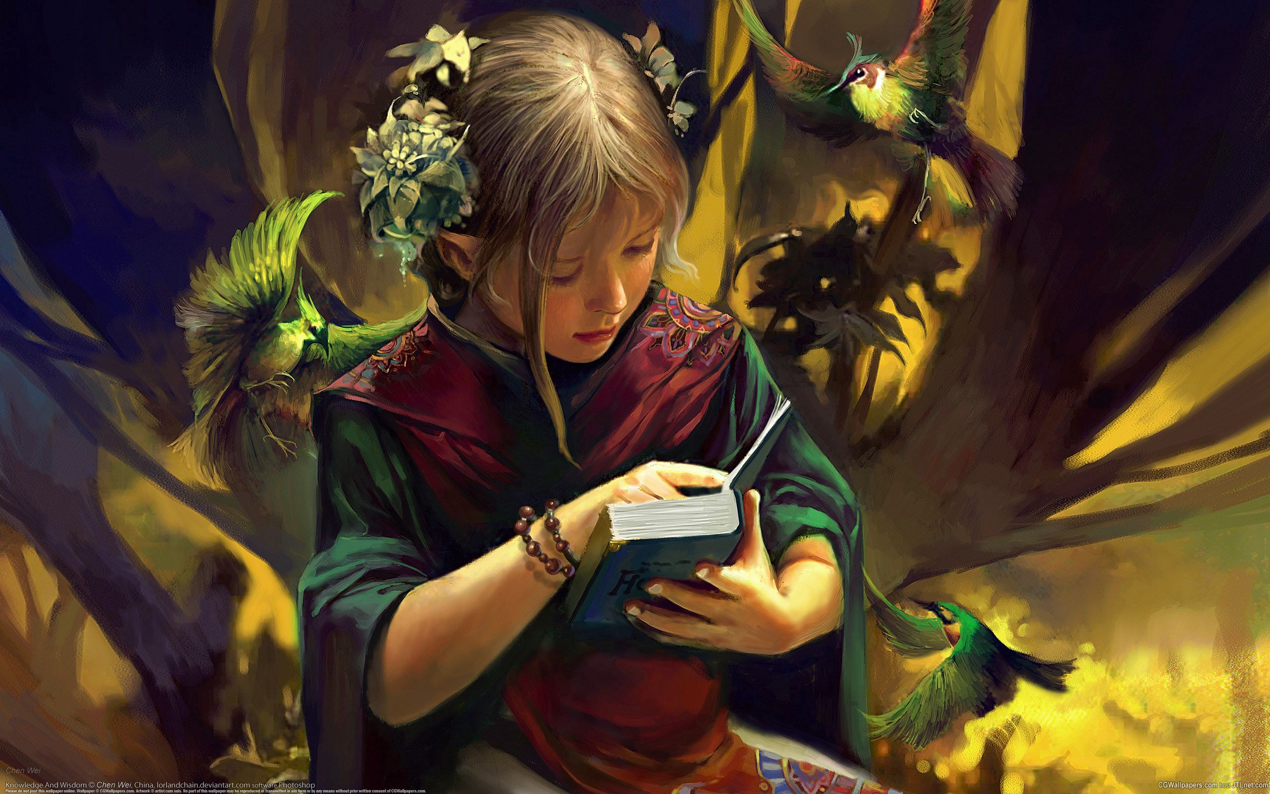 52425 Screensavers and Wallpapers Book for phone. Download Birds, Fantasy, Girl, Book, Elf pictures for free