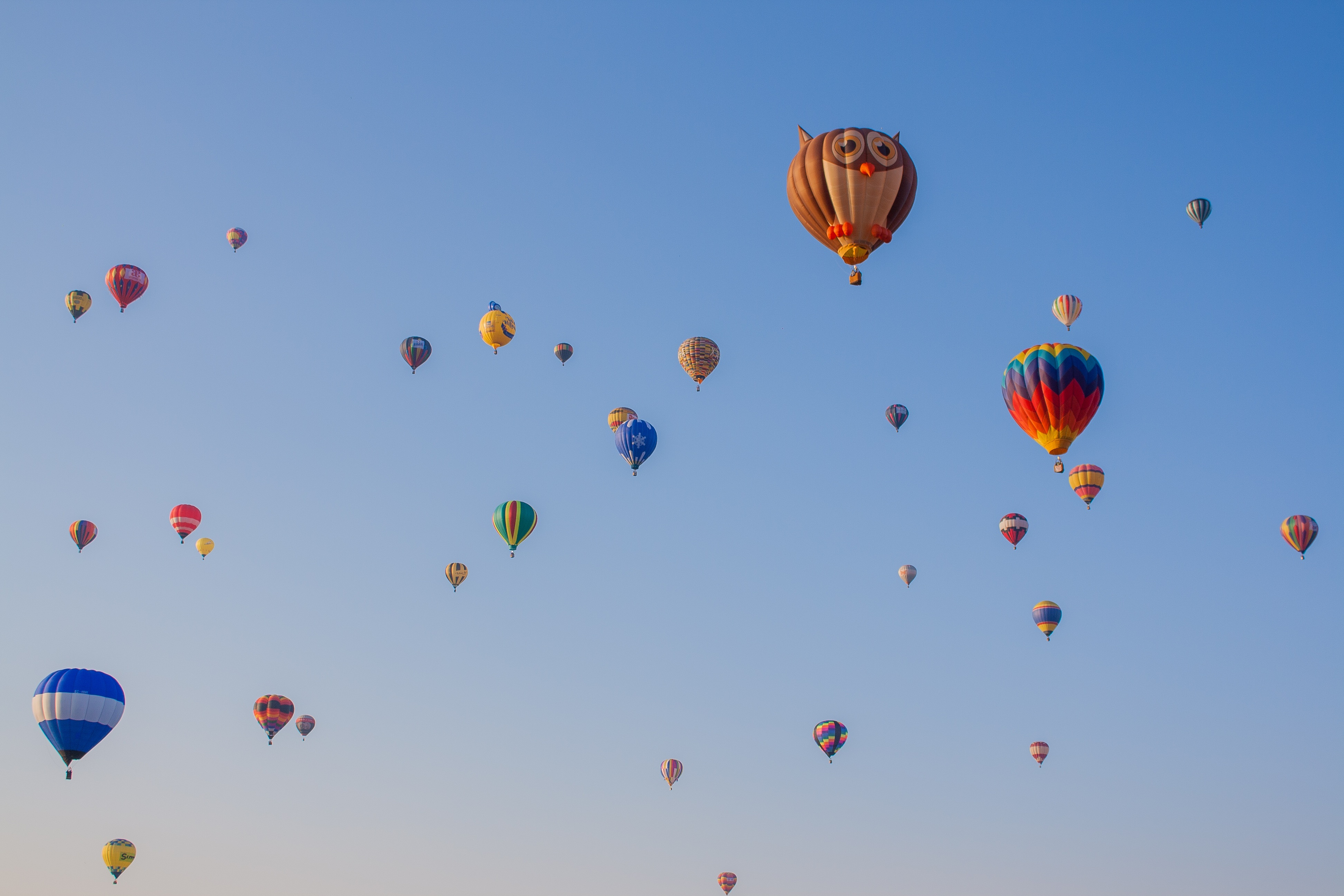 110999 Screensavers and Wallpapers Balloons for phone. Download Sky, Owl, Balloons, Miscellanea, Miscellaneous, Flight pictures for free
