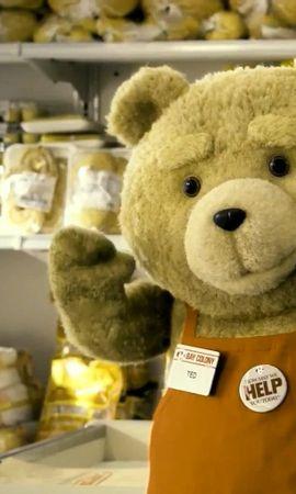 15888 télécharger le fond d'écran Cinéma, Bears, Ted - économiseurs d'écran et images gratuitement