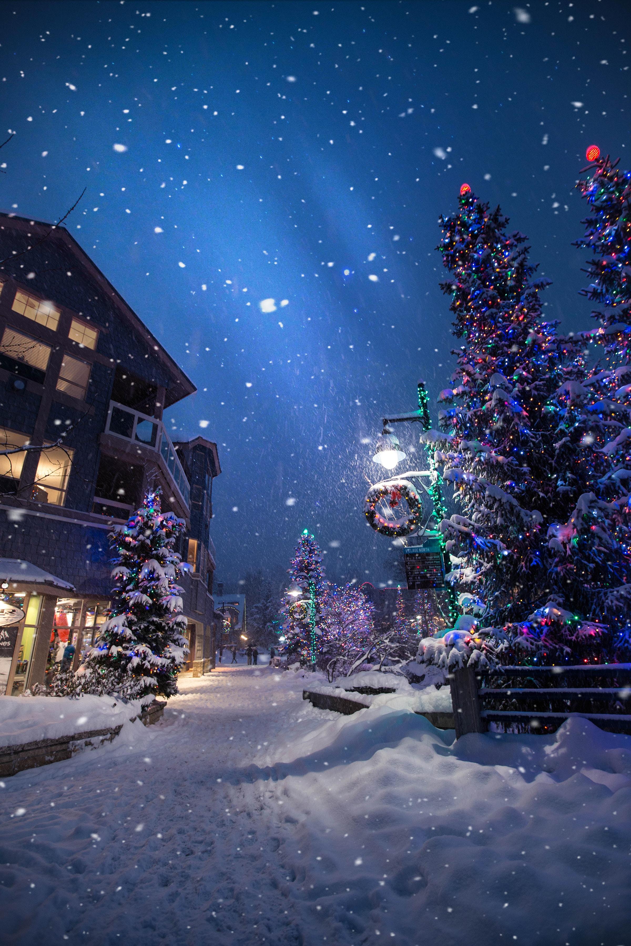 87795 скачать обои Зима, Праздники, Новый Год, Рождество, Улица, Настроение, Снегопад - заставки и картинки бесплатно