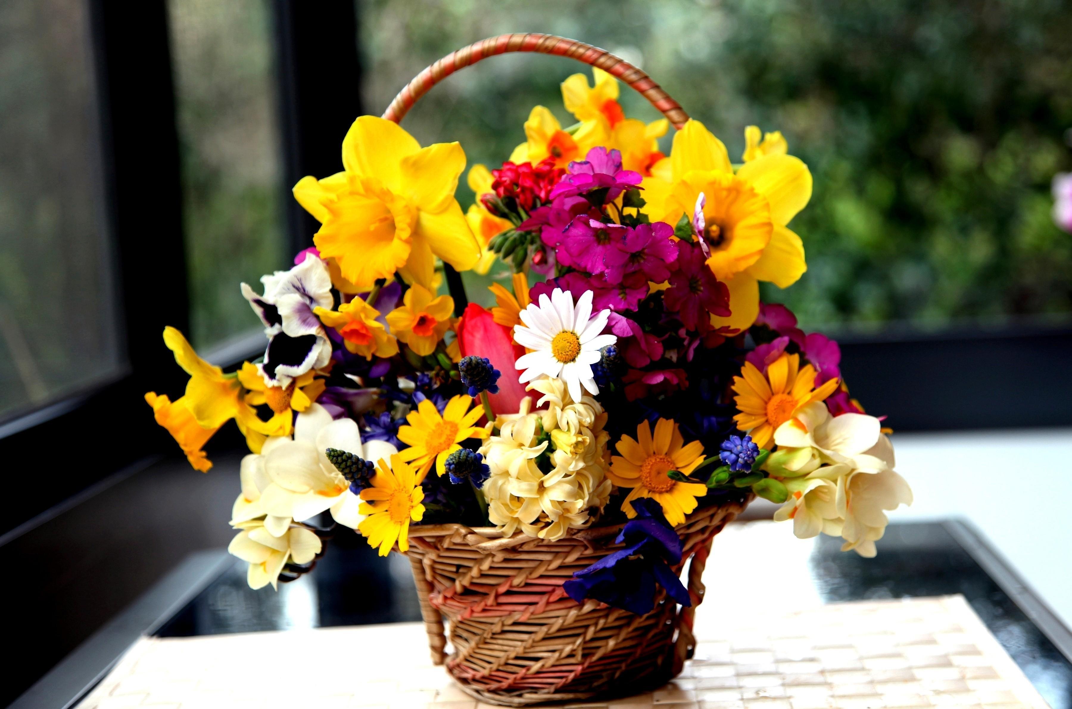90332 Заставки и Обои Нарциссы на телефон. Скачать Цветы, Нарциссы, Букет, Корзина, Гортензия, Фрезия, Мускари, Виола картинки бесплатно