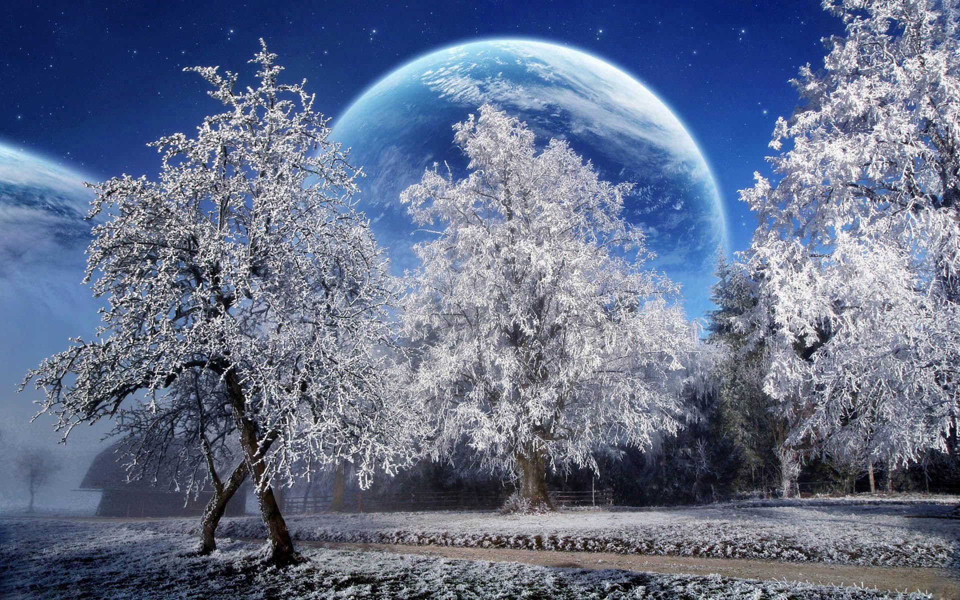 67239壁紙のダウンロードファンタジー, 木, 霜, 惑星, 土地, 地球, スカイ, 公園, スター-スクリーンセーバーと写真を無料で