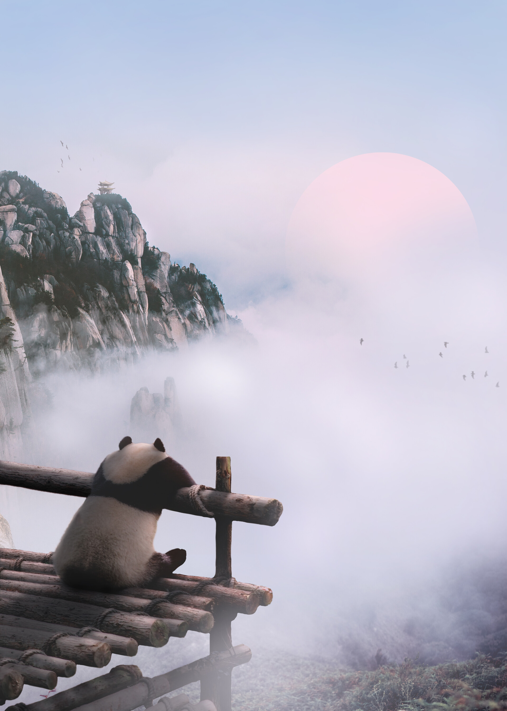 69351 download wallpaper Animals, Panda, Fog, Clouds, Nature, Mountains screensavers and pictures for free