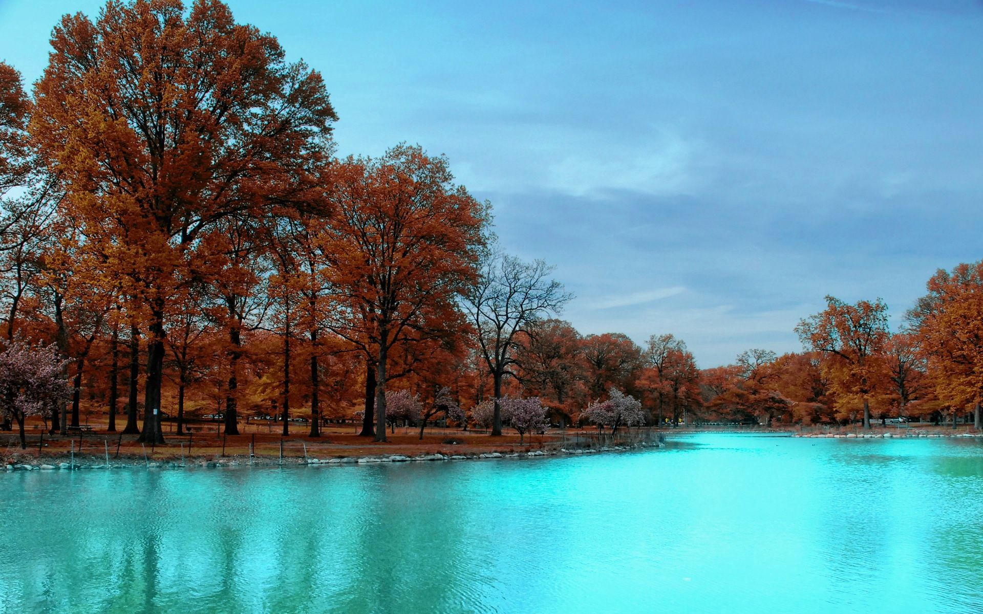 118269 download wallpaper Nature, Trees, Autumn, Park, Blue Water screensavers and pictures for free