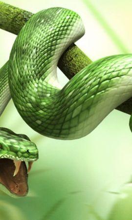 2728 descargar fondo de pantalla Animales, Arte, Serpientes: protectores de pantalla e imágenes gratis