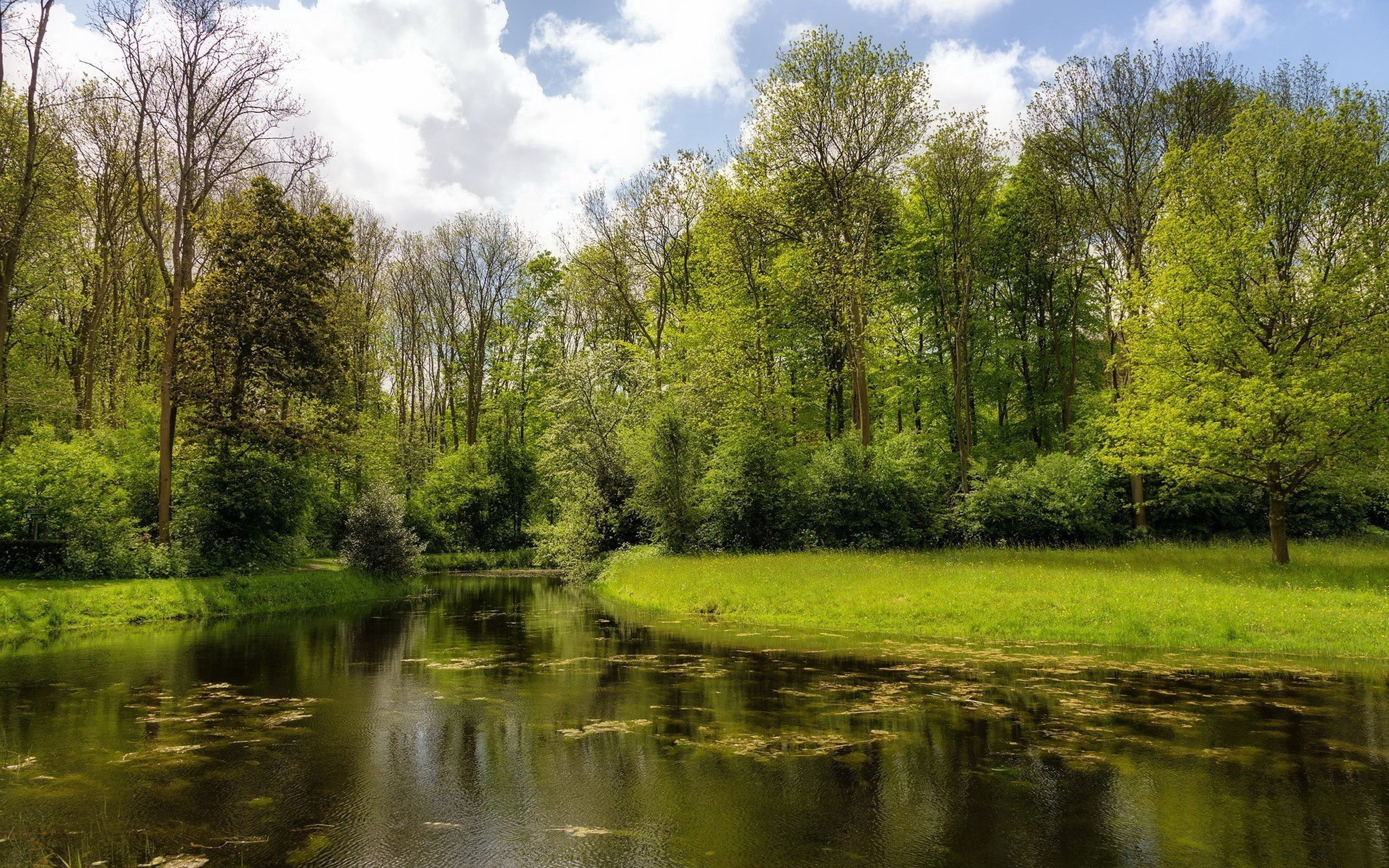 135279 Screensavers and Wallpapers Summer for phone. Download Nature, Rivers, Grass, Summer pictures for free