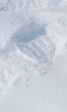 7935 скачать обои Животные, Зима, Белки, Снег - заставки и картинки бесплатно