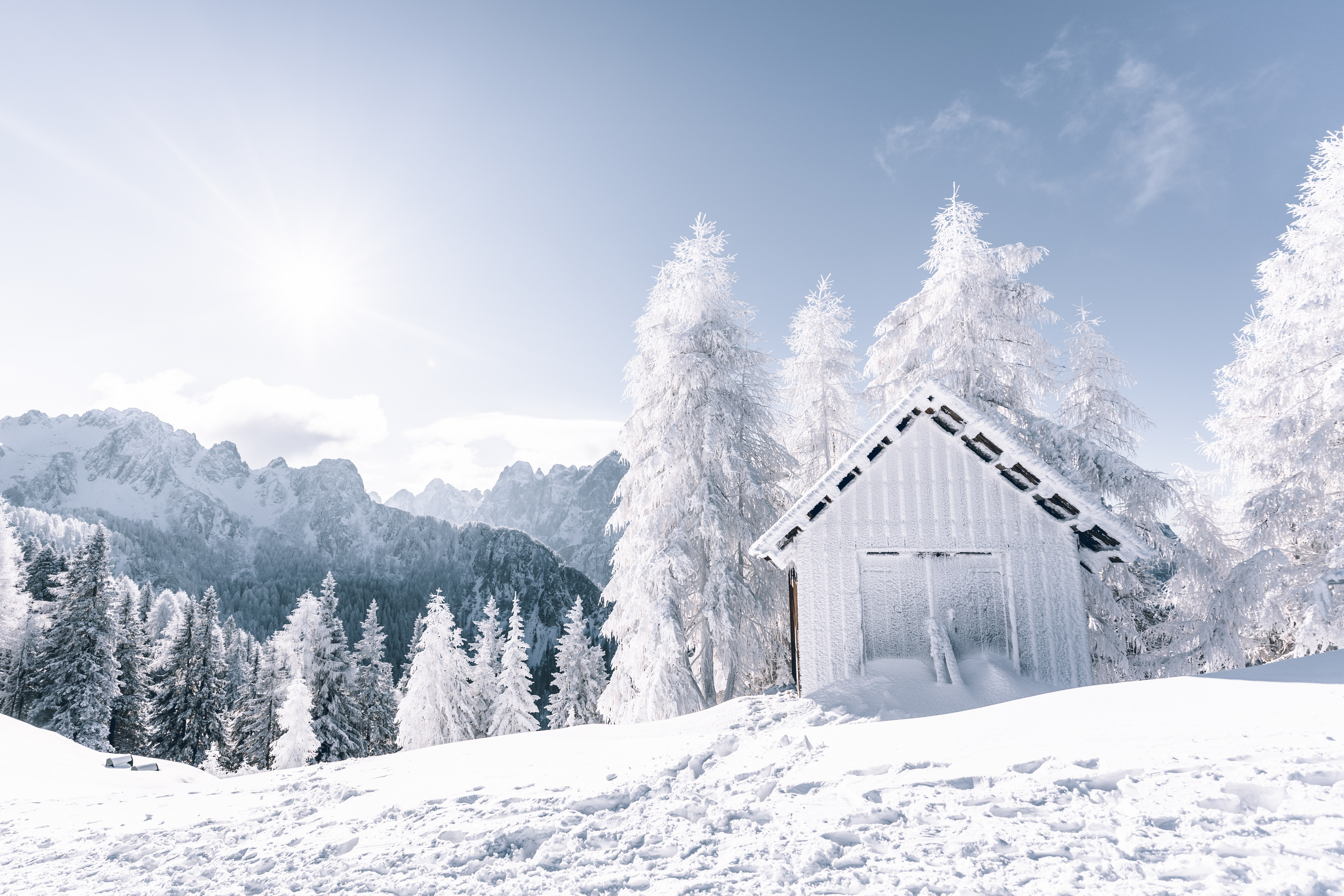 104324 Screensavers and Wallpapers Structure for phone. Download Winter, Nature, Trees, Mountains, Snow, Structure pictures for free