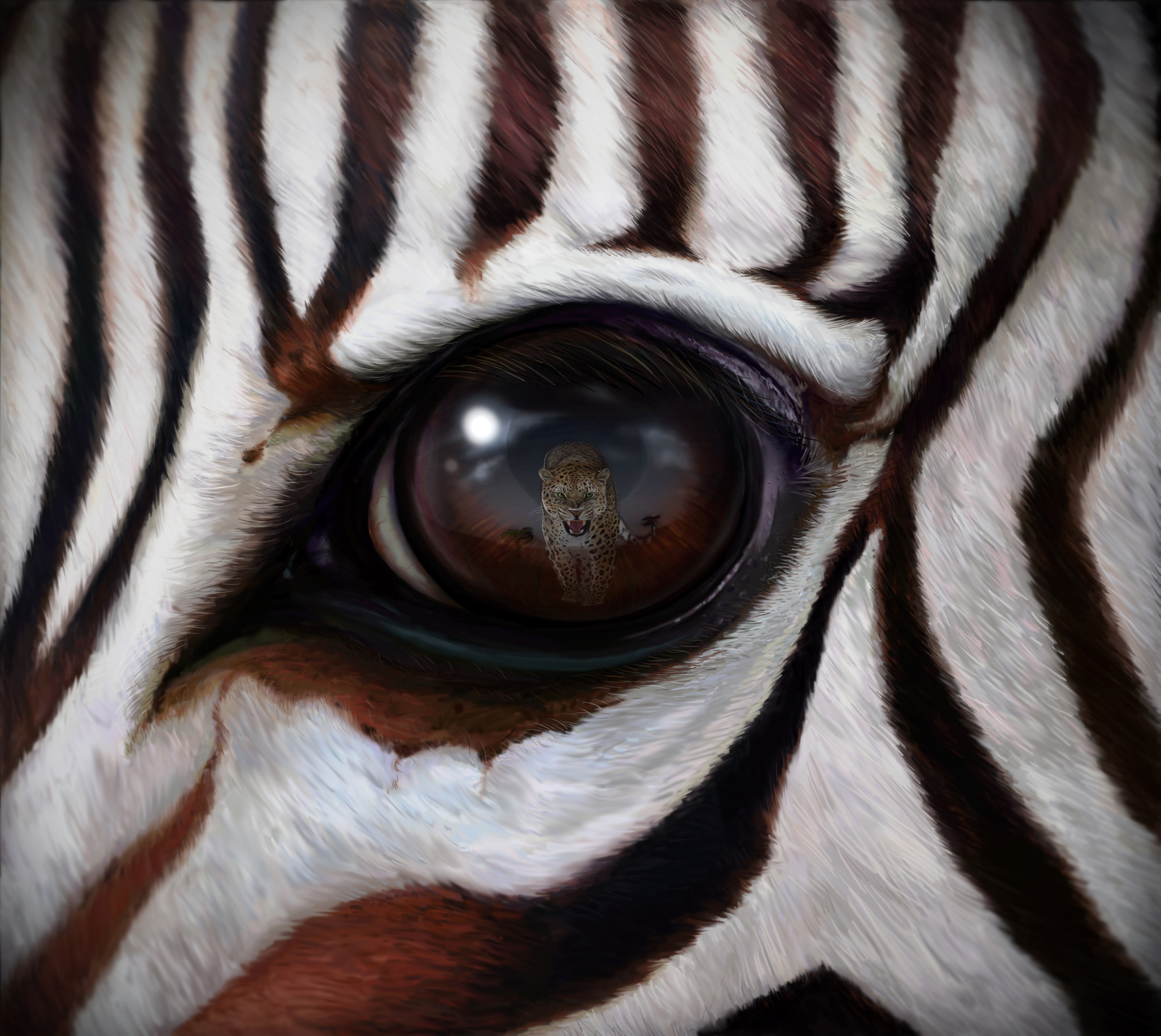 148829 download wallpaper Art, Zebra, Eye, Reflection, Leopard, Predator screensavers and pictures for free