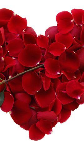 45493 télécharger le fond d'écran Plantes, Fleurs, Roses, Cœurs, Objets - économiseurs d'écran et images gratuitement
