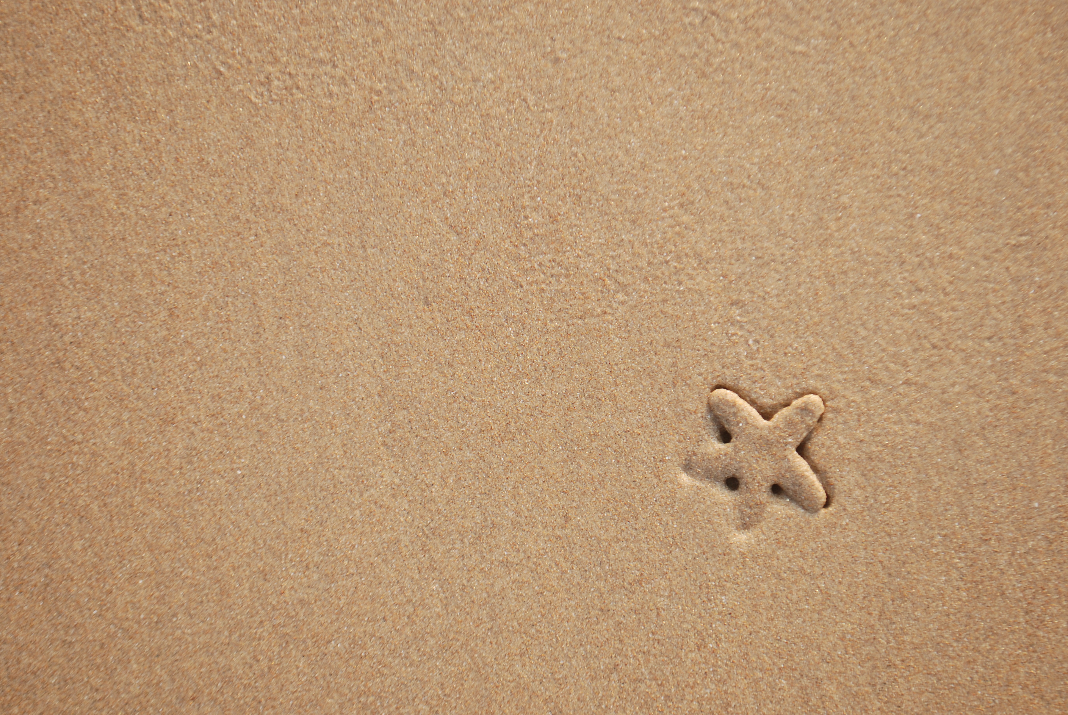 116187 download wallpaper Minimalism, Starfish, Sand, Beach, Texture screensavers and pictures for free