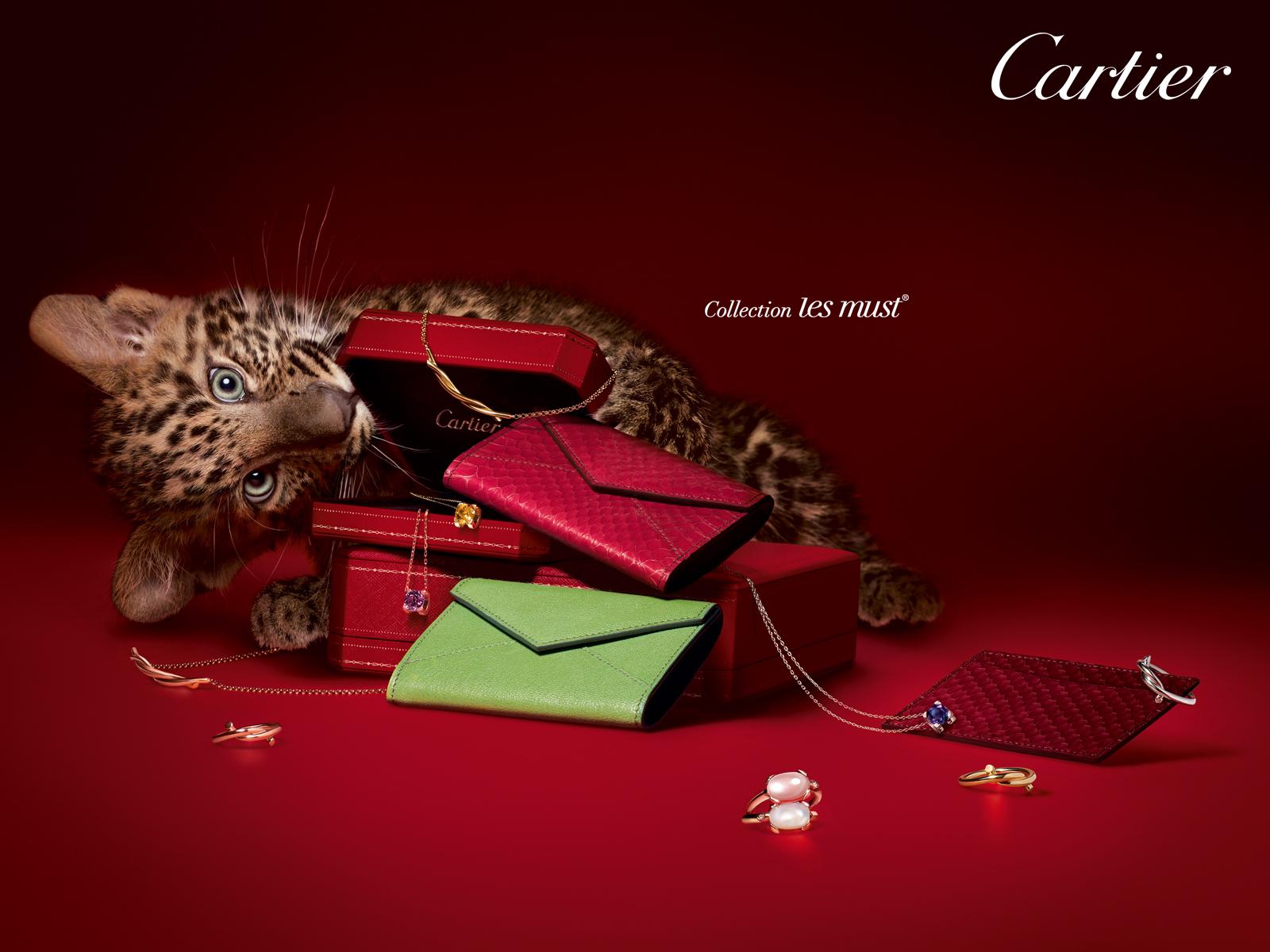 Handy-Wallpaper Tiere, Marken, Leopards kostenlos herunterladen.