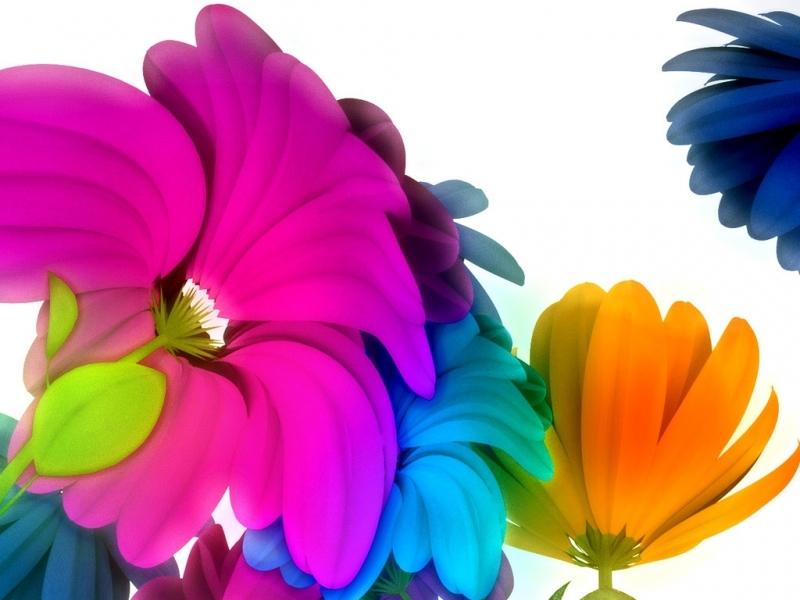 38672 Hintergrundbild herunterladen Blumen, Bilder - Bildschirmschoner und Bilder kostenlos