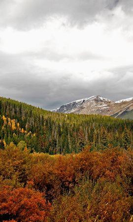 30108 скачать обои Пейзаж, Деревья, Горы - заставки и картинки бесплатно