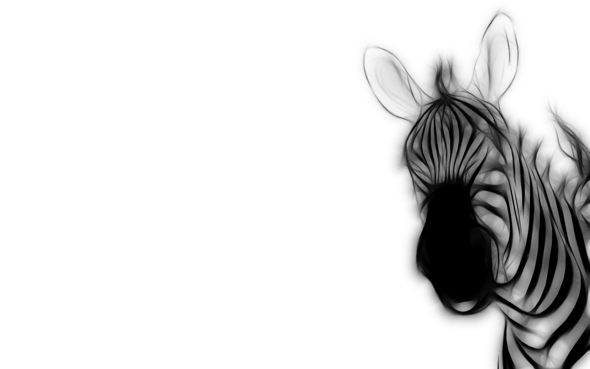 78721 download wallpaper Vector, Zebra, Stripes, Strips, Ears screensavers and pictures for free