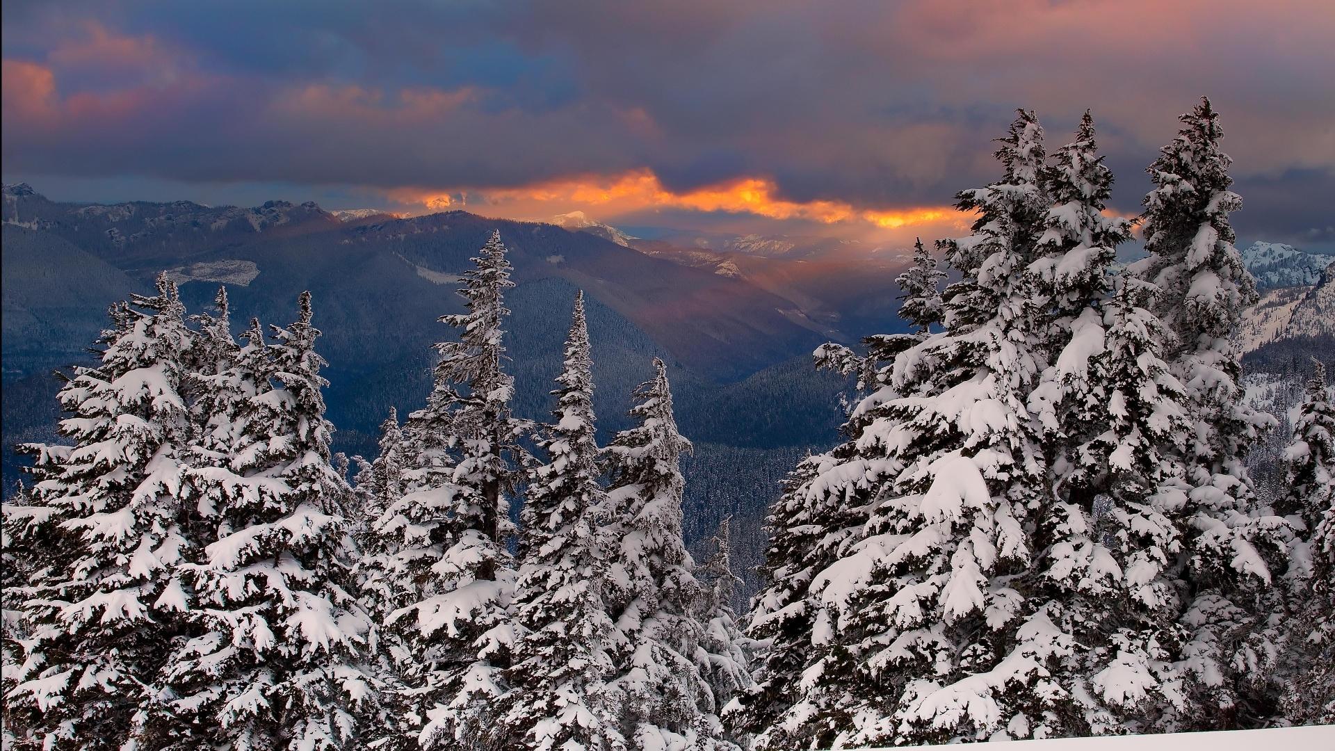 42758 скачать обои Пейзаж, Зима - заставки и картинки бесплатно