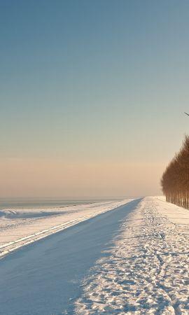20804 скачать обои Пейзаж, Зима, Деревья, Дороги, Снег - заставки и картинки бесплатно
