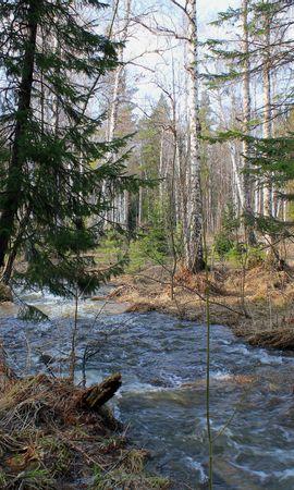 145638 скачать обои Природа, Лес, Деревья, Река, Течение, Пейзаж - заставки и картинки бесплатно