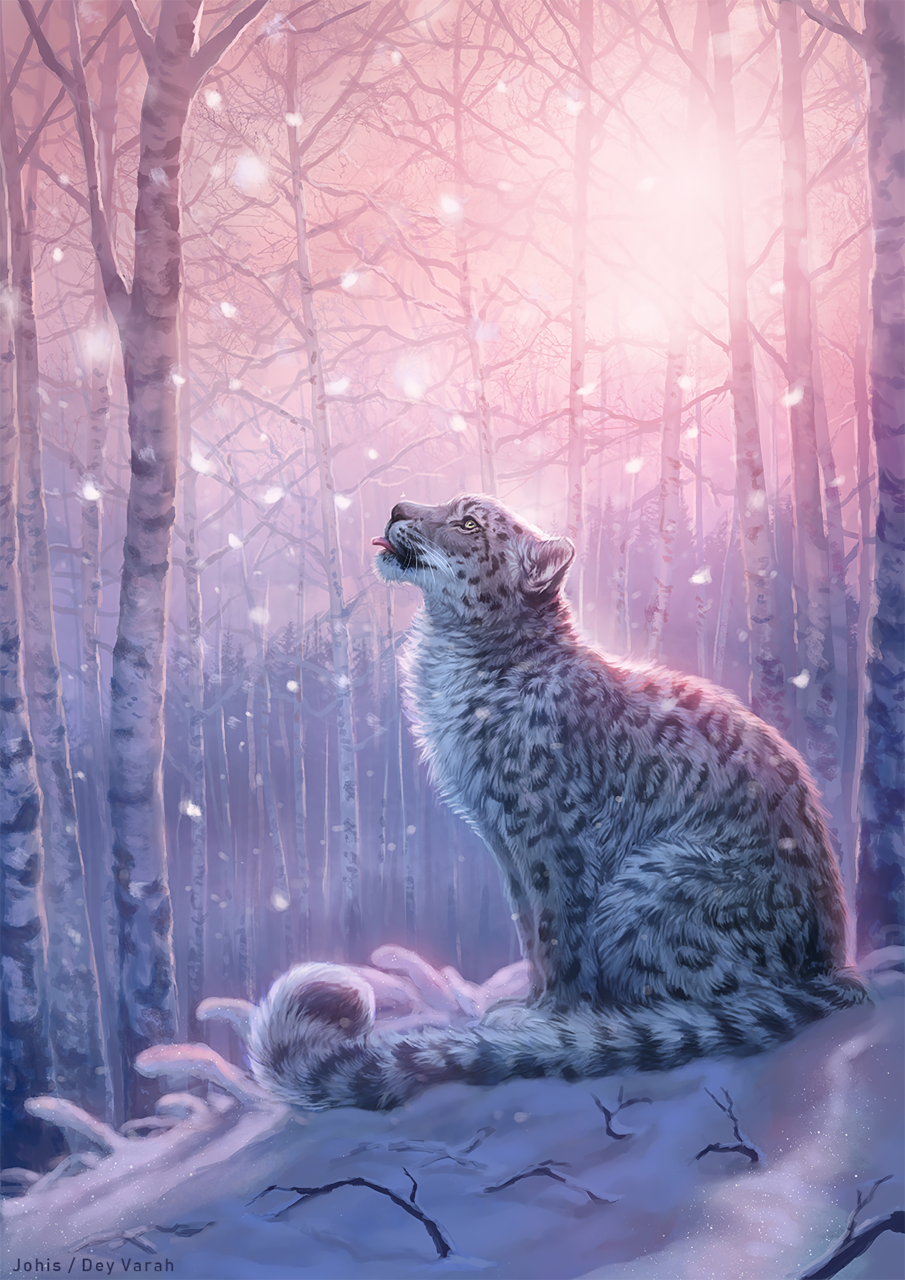 Best Snow Leopard wallpapers for phone screen