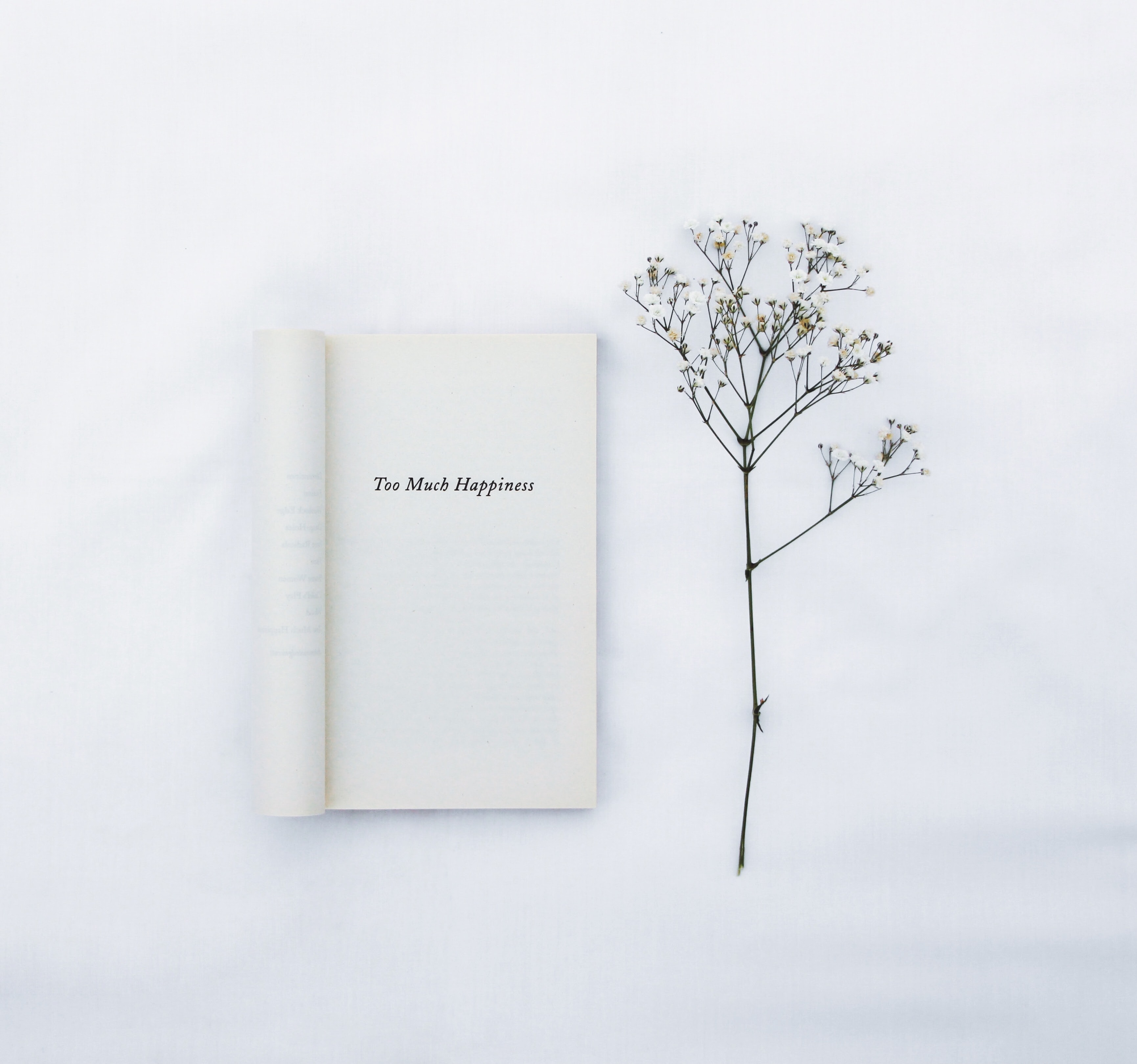 133759 Screensavers and Wallpapers Book for phone. Download Flower, Words, Minimalism, Inscription, Book pictures for free