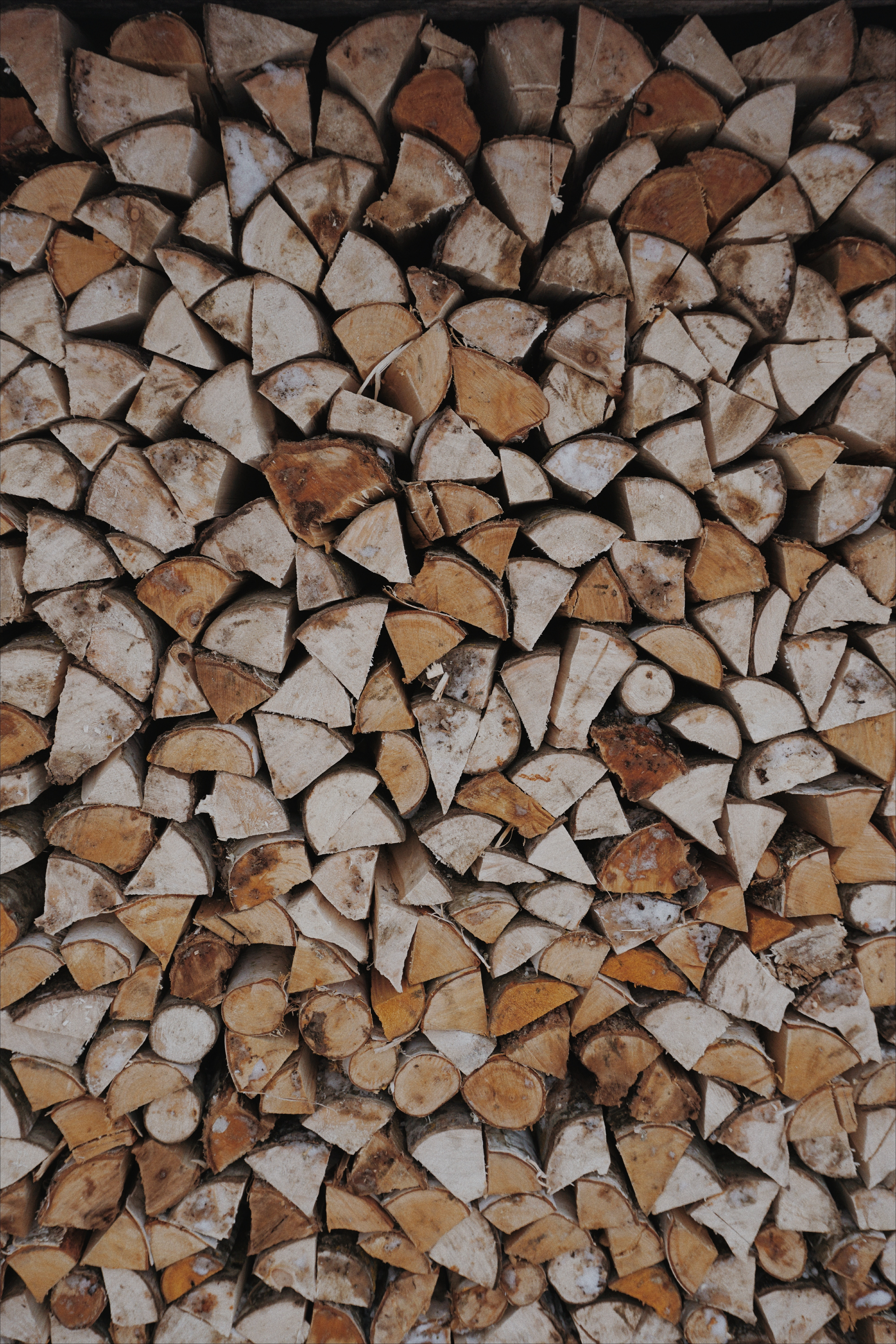148556 Screensavers and Wallpapers Firewood for phone. Download Miscellanea, Miscellaneous, Wood, Wooden, Firewood, Woman, Warehouse, Woodpile pictures for free