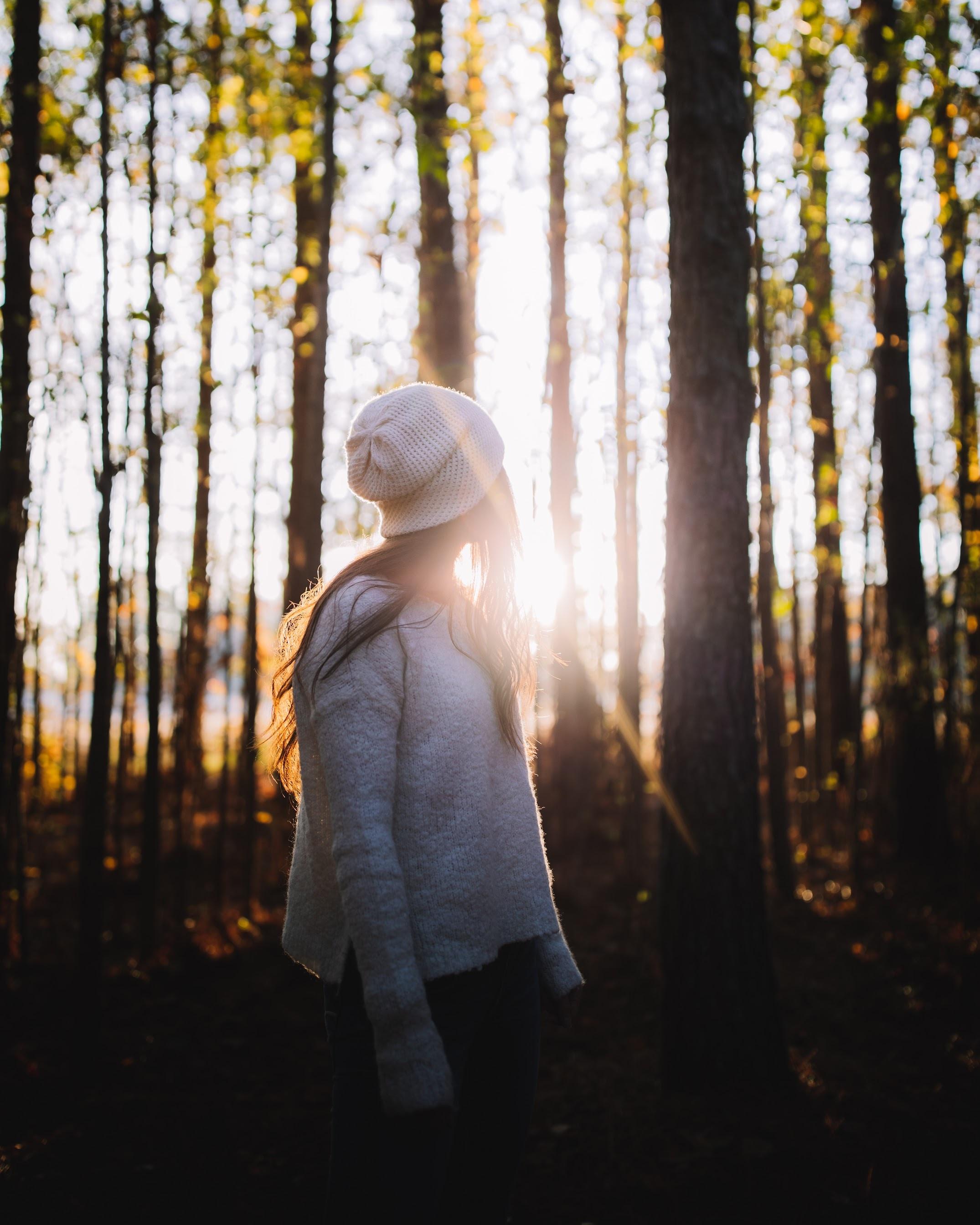 151187 скачать обои Разное, Девушка, Лес, Солнечный Свет, Деревья, Блики - заставки и картинки бесплатно