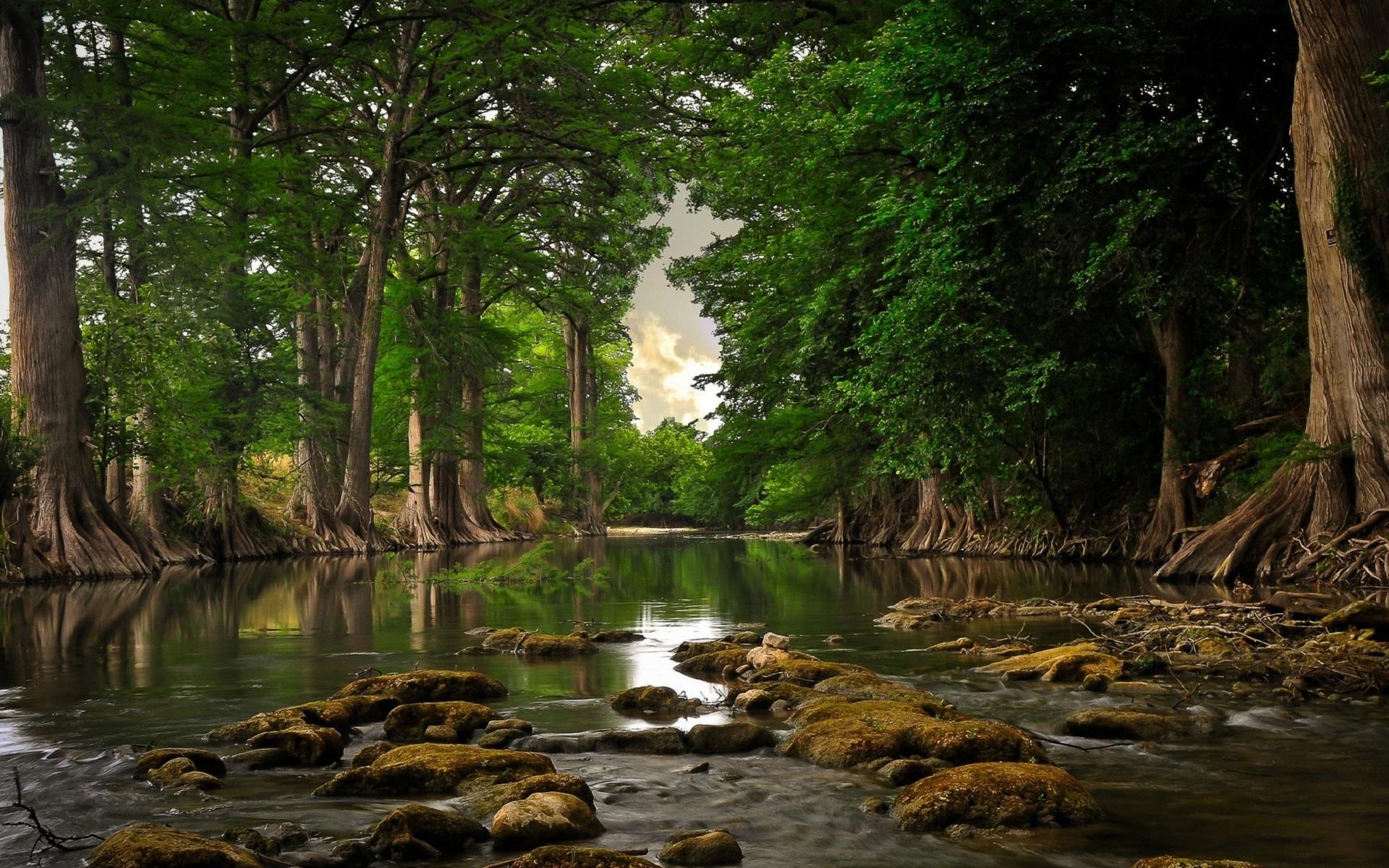 25831 скачать обои Пейзаж, Река, Деревья - заставки и картинки бесплатно