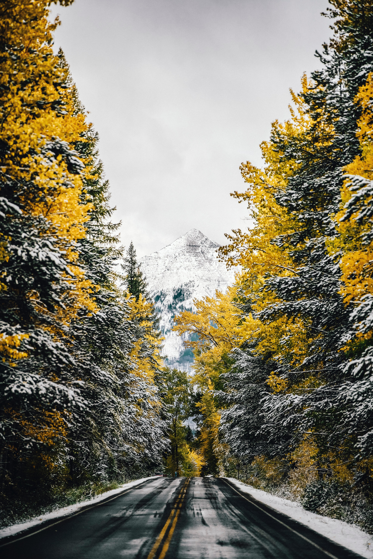 150657 скачать обои Природа, Деревья, Снег, Гора, Вершина, Дорога - заставки и картинки бесплатно