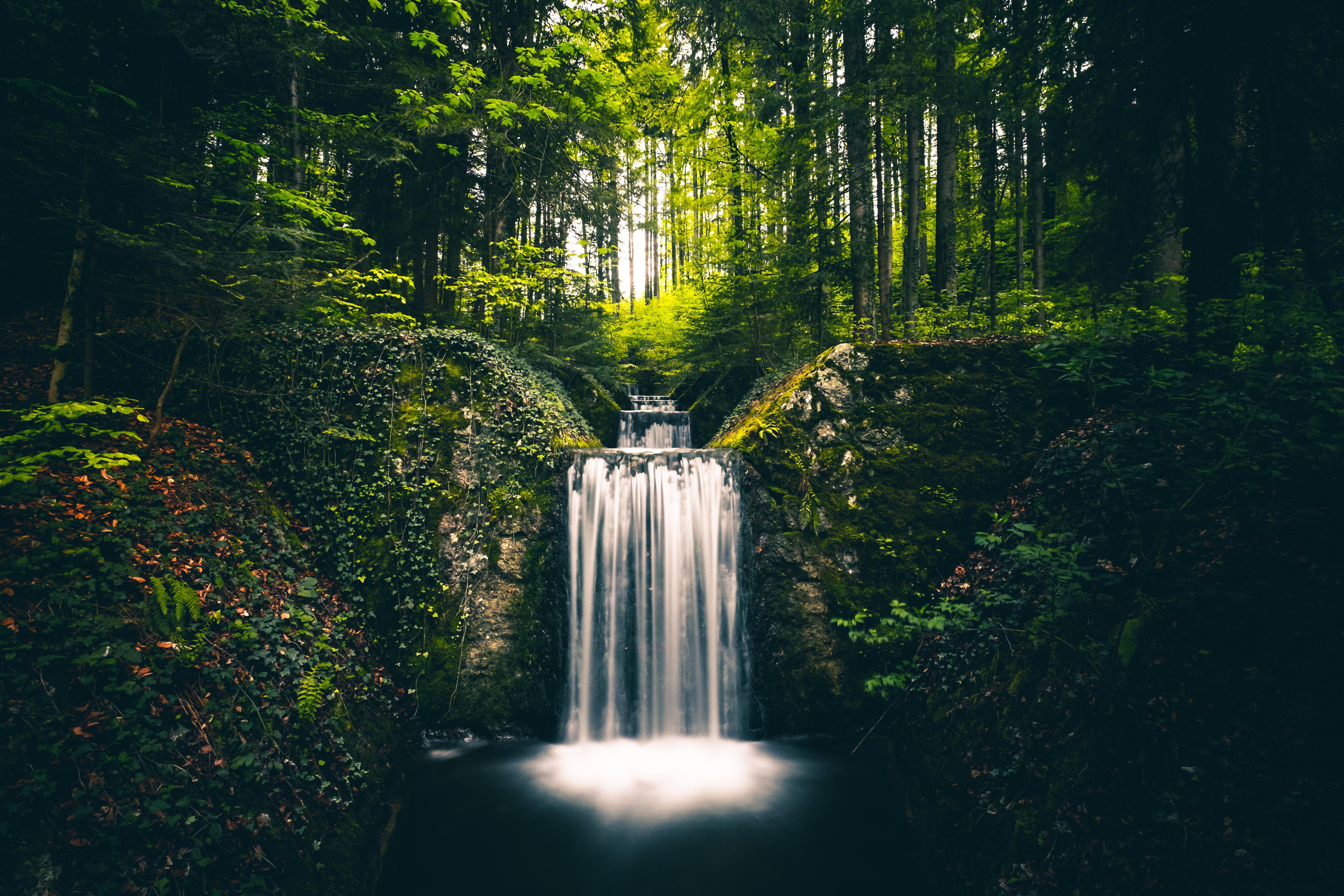 105667 скачать обои Природа, Водопад, Растения, Деревья, Кусты, Пейзаж - заставки и картинки бесплатно