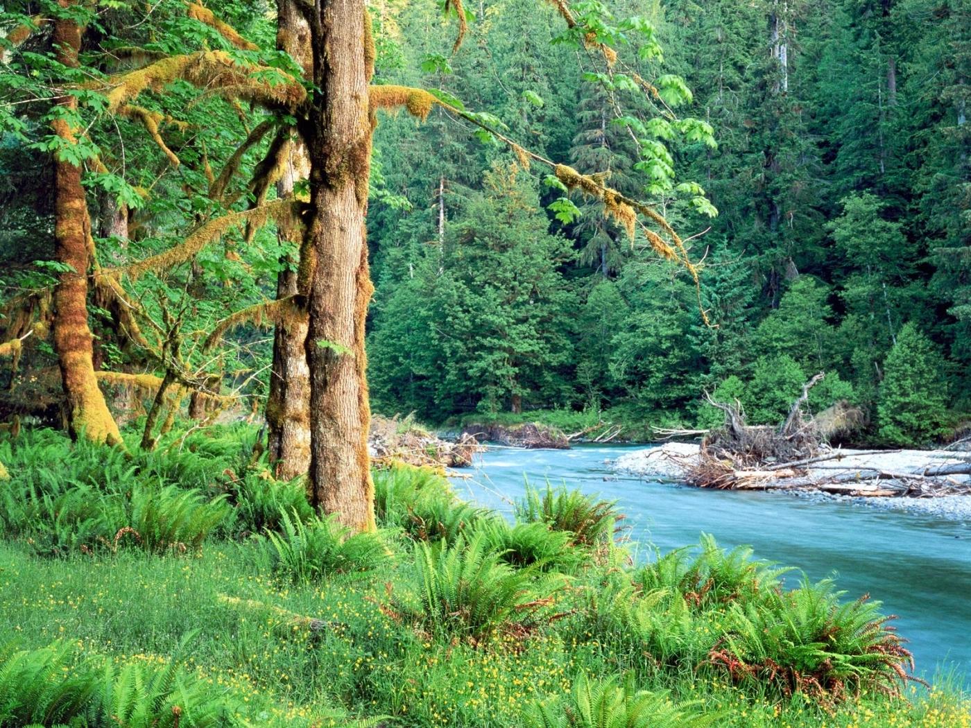 47237 скачать обои Пейзаж, Природа, Река - заставки и картинки бесплатно