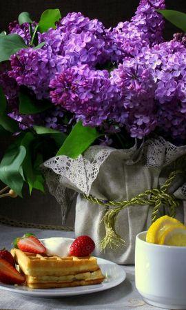 44715 скачать обои Растения, Цветы, Еда, Объекты - заставки и картинки бесплатно