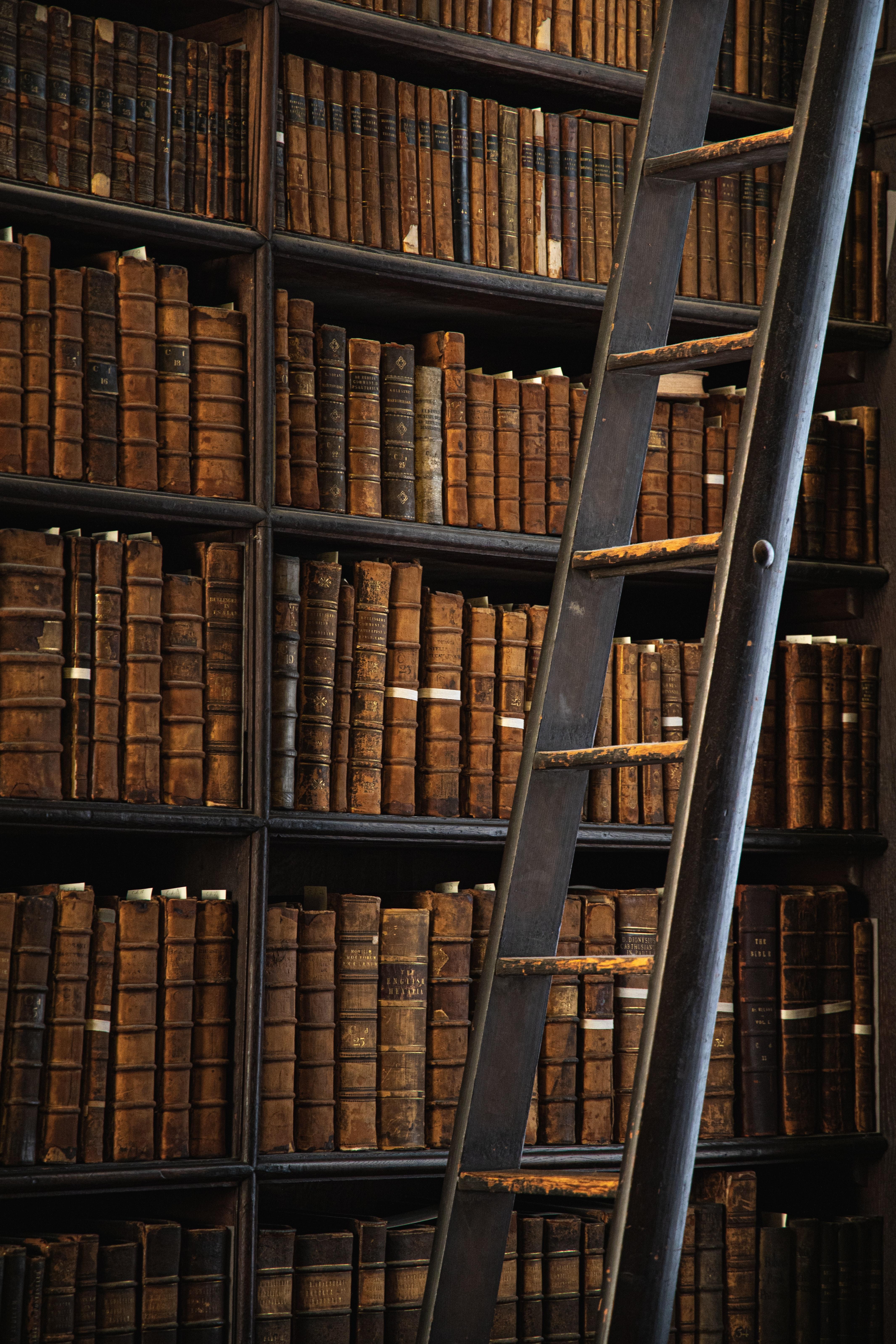 116831 скачать обои Разное, Библиотека, Книги, Стеллажи, Лестница - заставки и картинки бесплатно