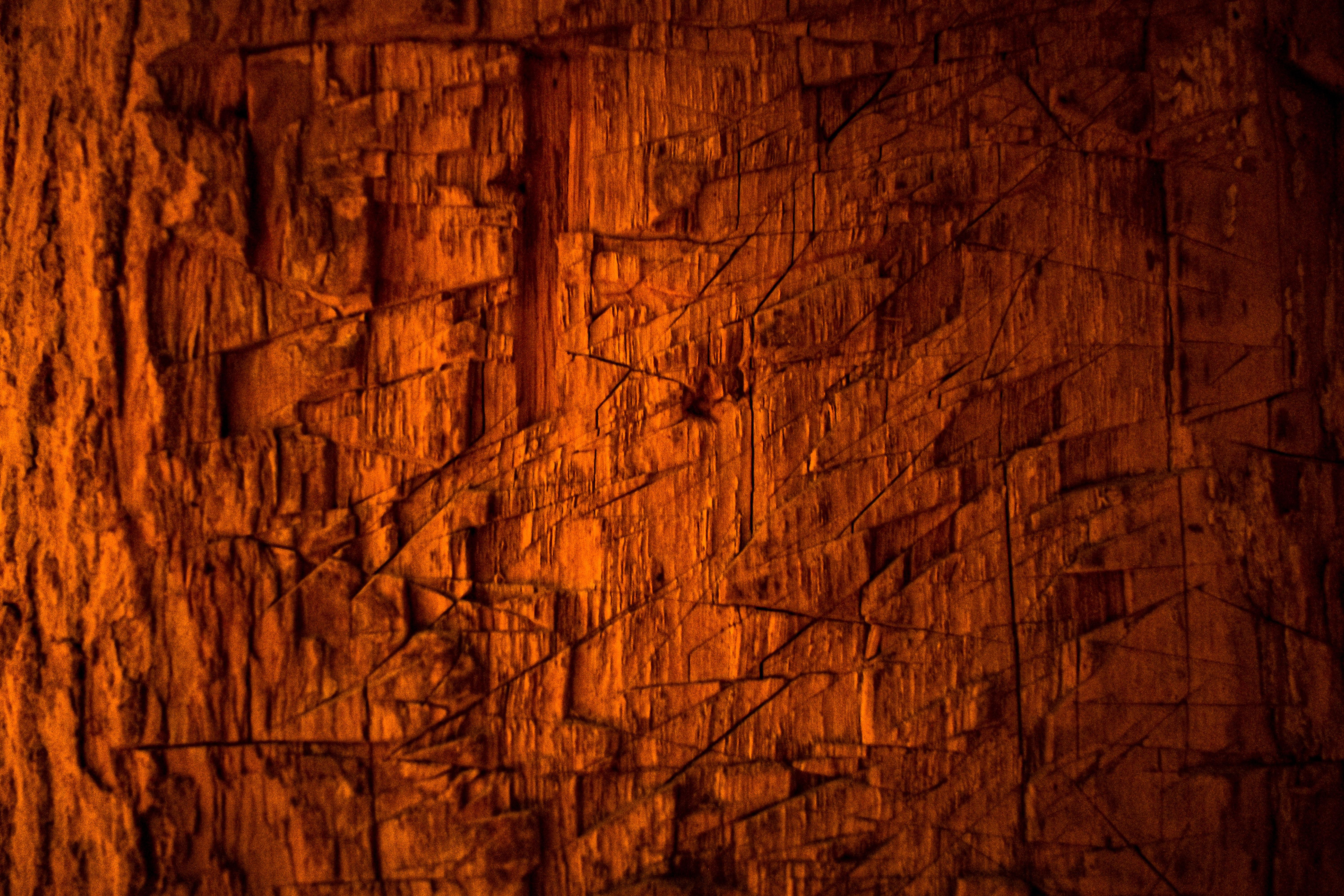 63976 Protetores de tela e papéis de parede Texturas em seu telefone. Baixe Texturas, Madeira, Árvore, Textura, Arranhões, Latido, Casca fotos gratuitamente