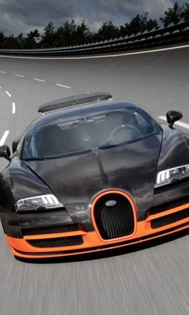 23571 download wallpaper Transport, Auto, Bugatti screensavers and pictures for free
