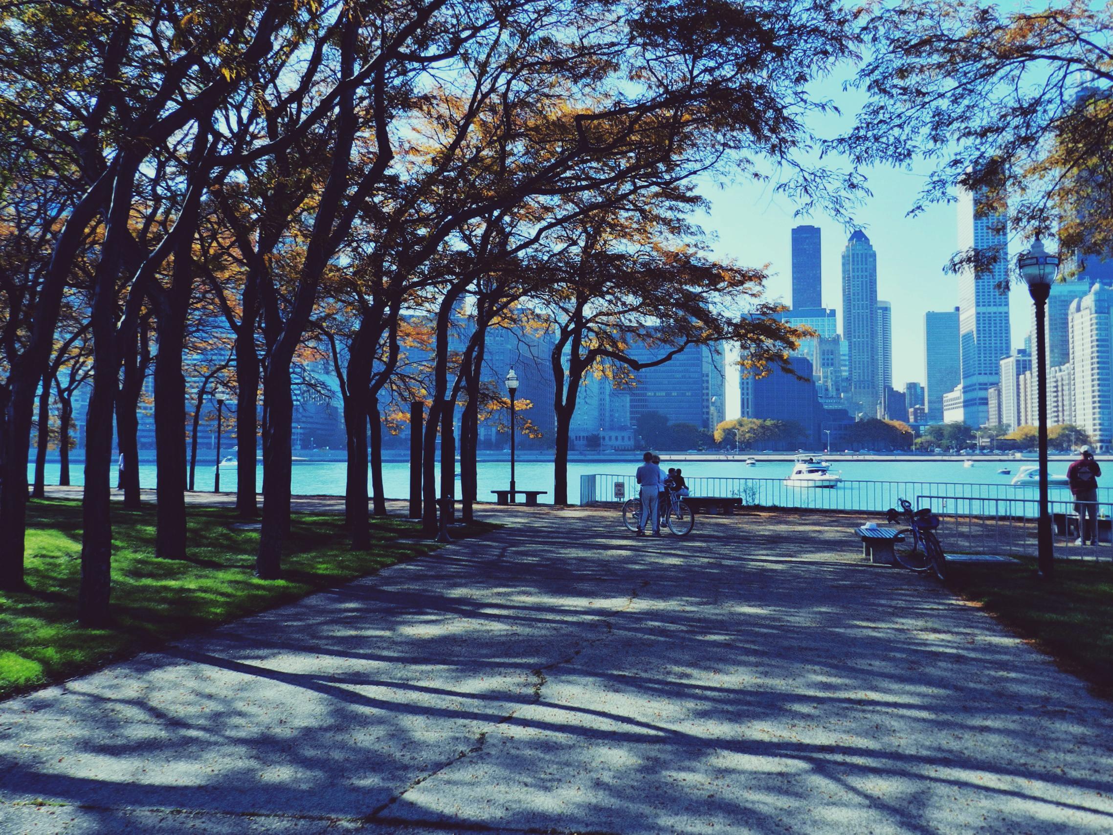 19555 скачать обои Пейзаж, Города, Деревья - заставки и картинки бесплатно