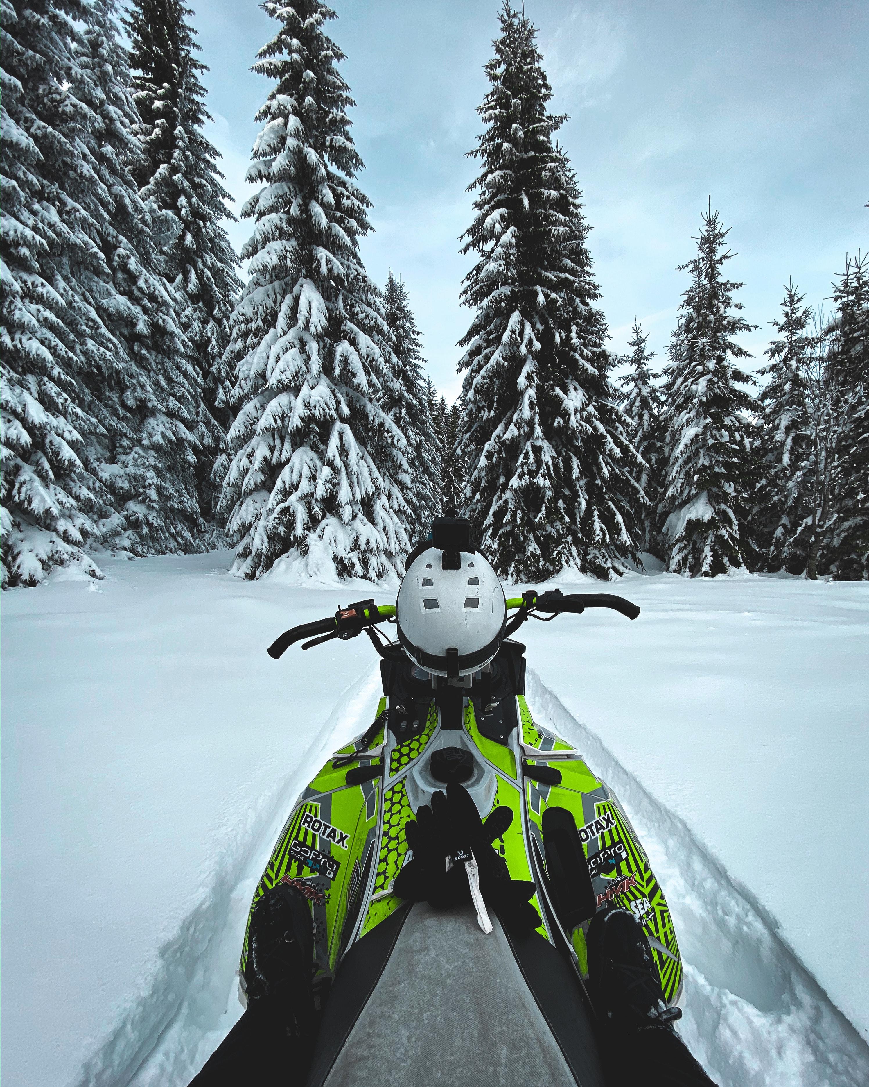 61454 скачать обои Спорт, Снегоход, Снег, Деревья, Зима - заставки и картинки бесплатно