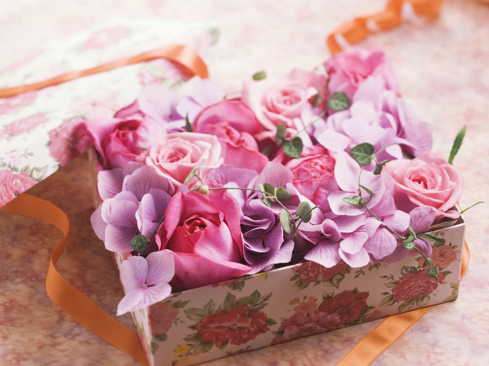 77716 download wallpaper Flowers, Box, Capsule, Tape, Present, Gift, Roses screensavers and pictures for free