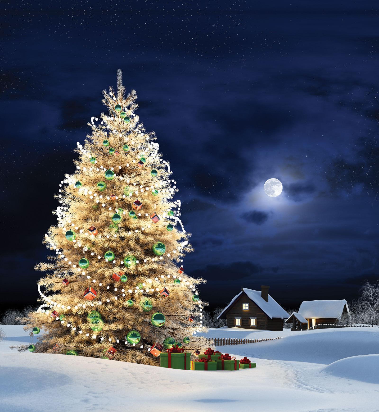 12987 descargar fondo de pantalla Vacaciones, Paisaje, Invierno, Árboles, Año Nuevo, Abetos, Navidad: protectores de pantalla e imágenes gratis