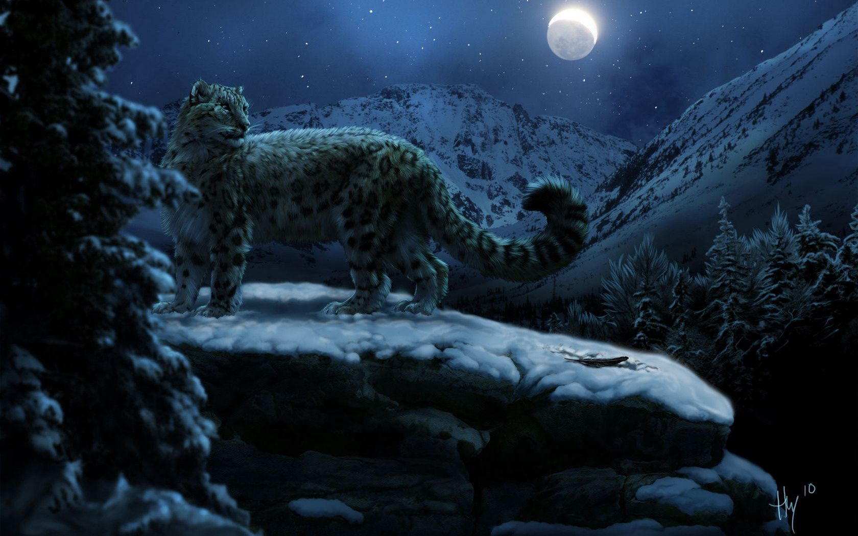 95755 download wallpaper Animals, Moon, Winter, Snow Leopard screensavers and pictures for free