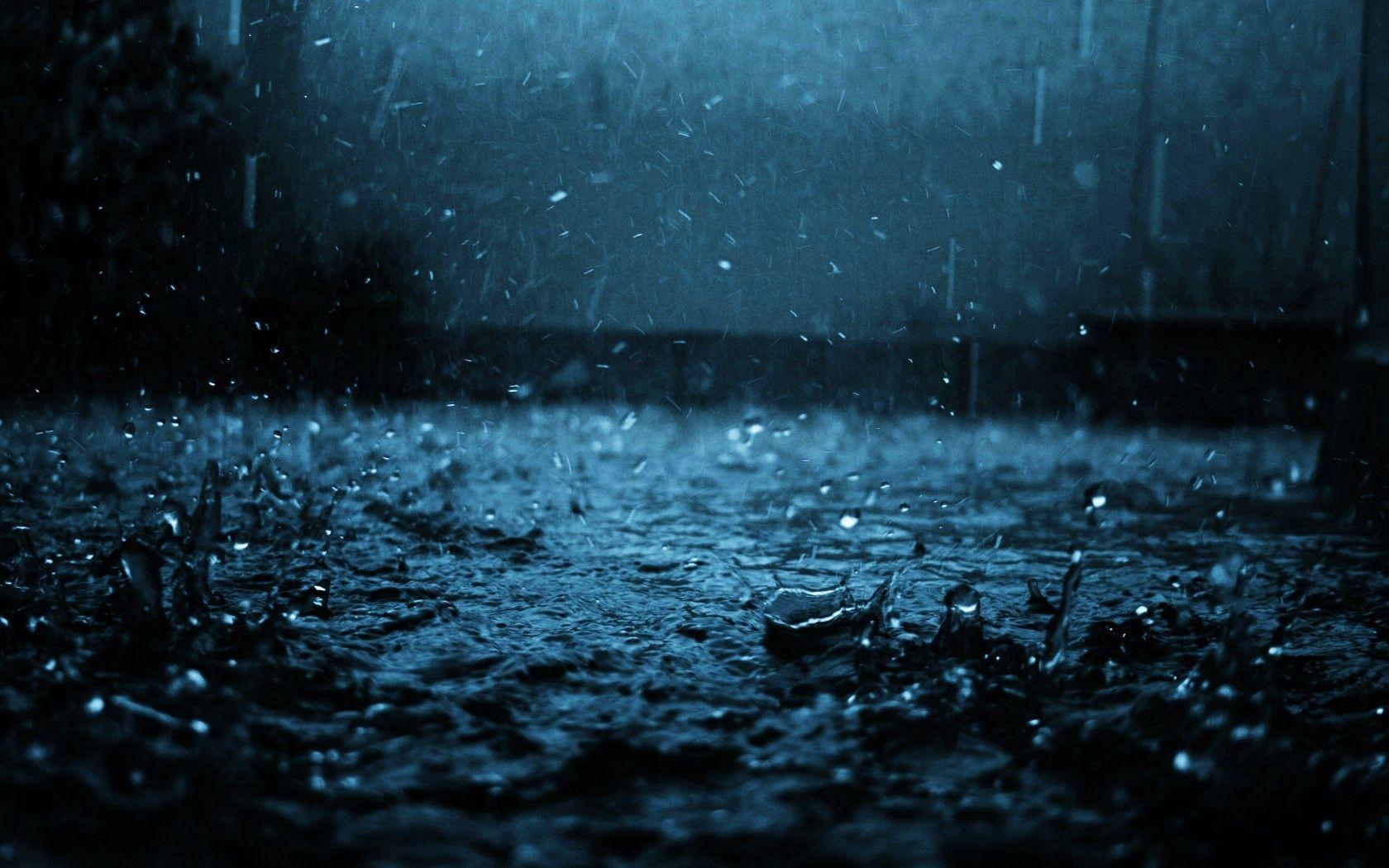 156467 Screensavers and Wallpapers Macro for phone. Download Rain, Macro, Dark, Drop pictures for free