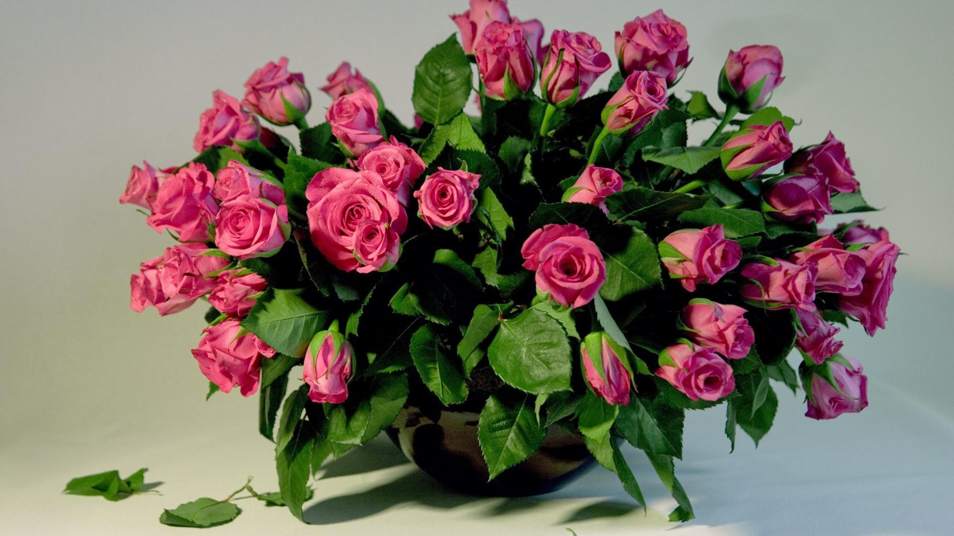 39922 скачать обои Растения, Розы, Букеты - заставки и картинки бесплатно