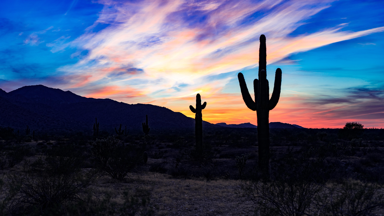 152211 скачать обои Природа, Кактусы, Закат, Облака, Пустыня - заставки и картинки бесплатно